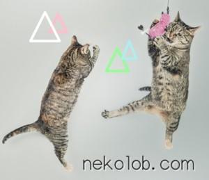 nekolob.comとは