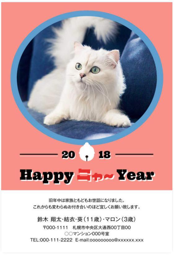 猫かわいい年賀状