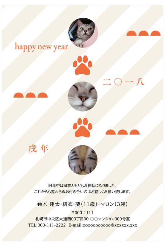 かわいい猫年賀状デザイン